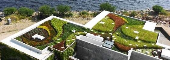 Krovni vrtovi