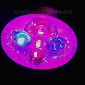 Dodatno osvetljenje za biljke – LED 10W